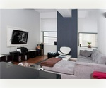 Beautiful Loft in the Financial District/Furnished, Concierge/ $3,995