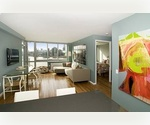 ***LIC Waterfront***1 Bedroom in New High Rise Building***Loaded with amenities***Full Service Doorman***No Fee