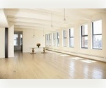 +DELIGHTFUL DUMBO LOFT IN PRIME LOCATION+